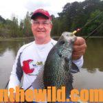 Secrets of Expert Crappie Farmer Tony Adams for Year-Round Crappie Success Day 5: Questions Tony Adams Often Is Asked about Building Crappie Structure