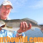 Catching Speckled Trout, Redfish and Tripletails on the Upper Gulf Coast Day 3: Anglers can Catch Redfish and Flounder after Speckled Trout on Mississippi's Gulf Coast