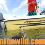 Catching Speckled Trout, Redfish and Tripletails on the Upper Gulf Coast Day 5: Florida Tripletails – How to Catch Them with Captain Sonny Schindler