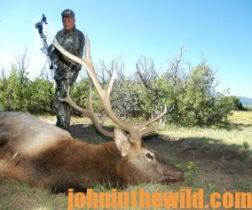 Hunter with downed elk