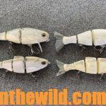 Why Buy a $60 Bass Lure with Guide Mike Carter Day 1: What Tackle Do You Use to Fish $60 Bull Shad Bass Lures