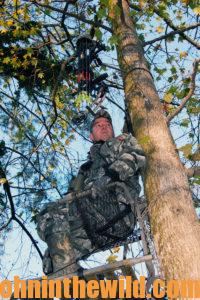 A hunter looks out from his tree stand