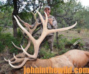 A hunter with his downed elk